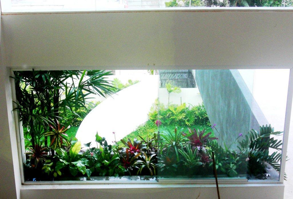 Ejecuci n de obra techo verde y jard n vertical terraza for Jardin vertical terraza
