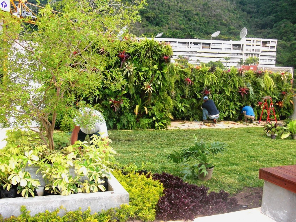 Ejecuci n de obra techo verde y jard n vertical terraza - Jardin vertical terraza ...