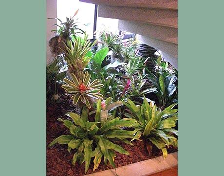 jardineras de interior