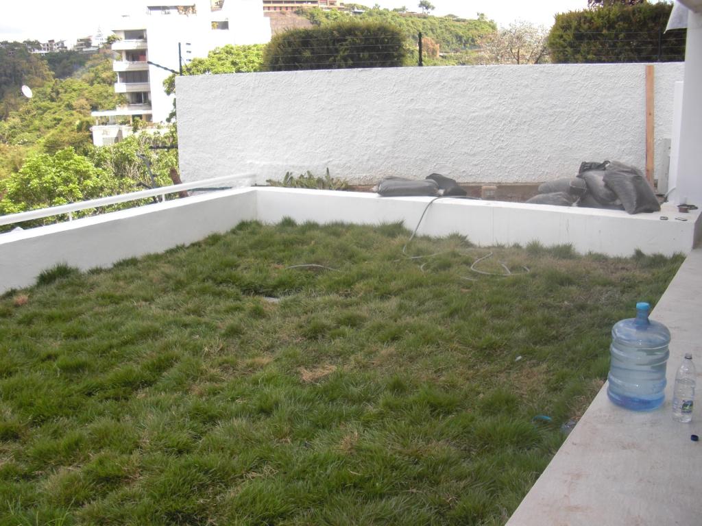 Proyecto y ejecuci n de obra jard n residencial y jard n for Proyectos de jardines