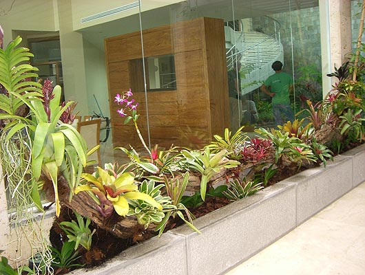 Ejecuci n de obra jardineras residenciales y p rgola for Jardineras para interiores