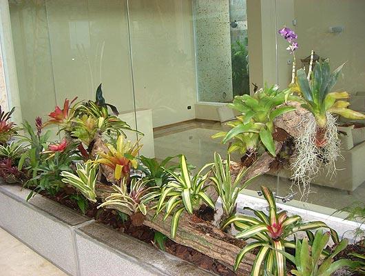 jardineras interiores
