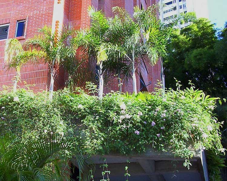 Paisajista de jardines fabulous paisajista jardines del for Jardin paisajista