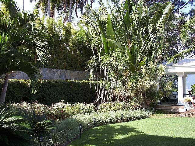 Rehabilitaci n paisajista jard n residencial quinta san for Jardin paisajista