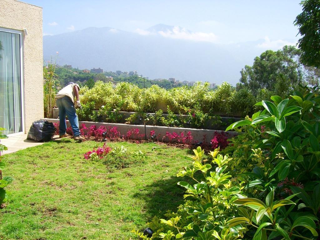 Jard n residencial casa 305 adriana mirabal paisajismo for Mantenimiento jardines