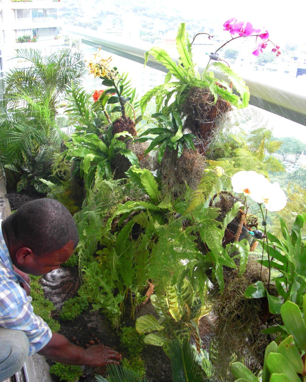 Jardineras apartamento 32 b conjunto residencial foresta for Mantenimiento de jardines