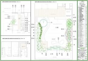 Proyecto de Arborización
