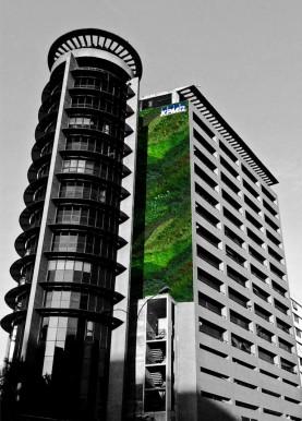 Fotorrealismo Jardín Vertical - Vista 1
