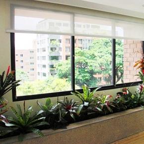 Proyecto Y Ejecucion De Obra Jardin Residencial Interior Y - Jardinera-interior