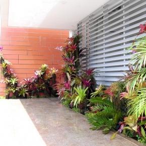 plantas-exoticas (1).JPG